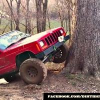 Locked Jeep Cherokee XJ Climbing tree